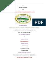 Ashok Report