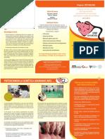 a-au047s.pdf