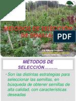 METODOS DE SELECCIÓN DE SEMILLAS.pptx