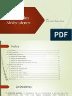 potenciales-moleculares