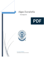 Alga Dunaliella