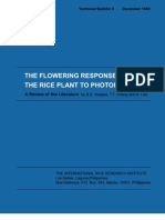 The Flowering Response of the Rice Plant to Photoperiod (TB8)