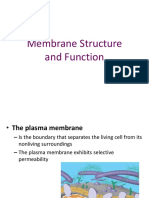 Cell Membrane 7 12