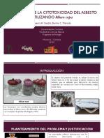 Proyecto-RedColsi