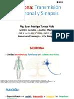 3_Neurona