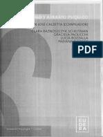 Subjetividad y aparato psíquico, Calzetta (comp)