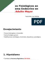 Cambios Fisiológicos en El Sistema Endocrino en El adulto mayor