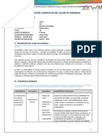 Planificaciòn Curricular Handball 1