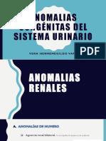 ANOMALIAS CONGÉNITAS DEL SISTEMA URINARIO