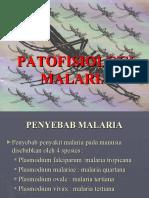 Patofisiologi Malaria
