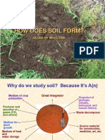 HOW DOES SOIL FORM
