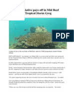 Reef Ball Initiative Pays Off in Mid Reef Damaged by Tropical Storm Greg