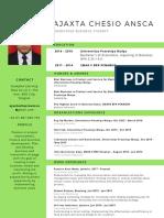 CV AjaxtaChesioAnsca(1)