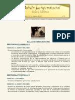 Boletín jurisprudencial n.º 8 - 2019