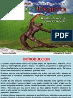 4. Por Una Espiritualidad Ecologica - Ecoformacion