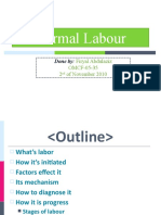 5.Normal Labour FIRYAL