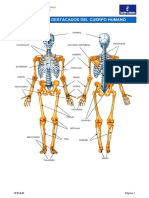 Apuntes 4 de la Eso- Condición física