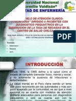 MODELO DE PRESENTACIÓN PARA SUSTENTACIÓN.ppt.pps
