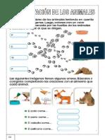 alimentacic3b3n-de-los-animales.docx
