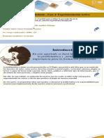 Fase 4_ Experimentacion Activa_ El Plagio_Ricardo Aguillon