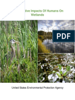 impact of humans and wetlands copy