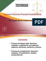 Ayuda 6 Der Proc Constituc (1)