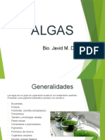 3. Algas