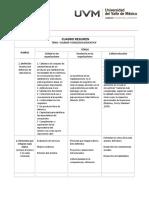 Cuadro_Resumen.docx