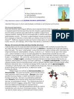 Carbohydrates - Overview.pdf