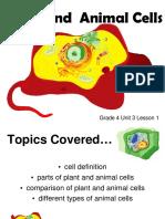 Grade 4 Unit 3 Lesson 1 Plant & Animal Cells.pdf