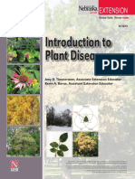 Introduction of plant disease