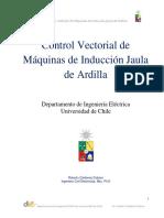 Control Vectorial de Máquinas de Inducción Jaula de Ardilla