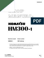 232599737-HM-300.pdf