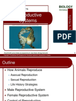 41 Lecture Animation Ppt