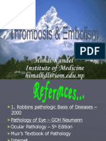 Thrombosisembolism 111222003828 Phpapp02 Converted