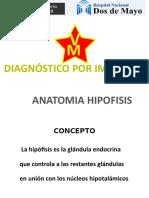 1. Anatomia y Patologia de Hipofisis