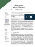 Credit Rating Report - 2009