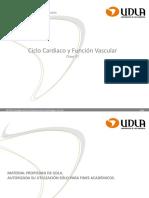 Ciclo cardiaco y función vascular