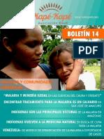 Boletin 14 MALARIA 2019