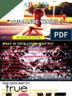 ABOUT True Loves Wait