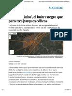 'Carrascalinho', el buitre negro que paró tres parques eólicos