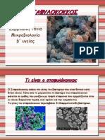Slideshow Stafulokokkos