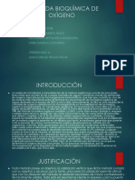 Presentacion Del Dbo h(Sena)