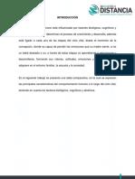 """1.4 Tabla Comparativa """"Comportamiento Humano a Lo Largo Del Ciclo Vital"""""""