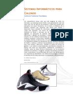 Articulo Informatica CALZADO