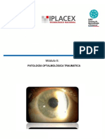 Material de Estudio_Modulo II_Trauma Ocular Grave
