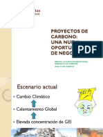 Exp.PROYECTOS-DE-CARBONO-CaritasGO.pdf