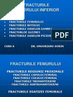 204348894-Curs-6-Fracturile-Membru-Inf.pdf