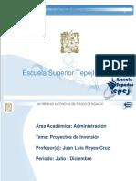 Proyectos_de_Inversion.pdf