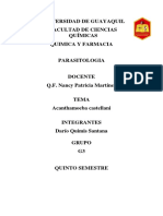Acantamoeba Castellani